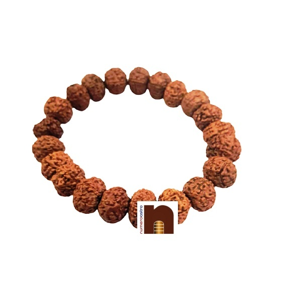 Natural & Original 10 Mukhi Indonesian Rudraksha Bracelet (Stretchable) (1 Pc)